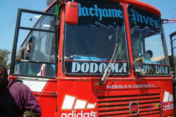 autobusF264DABF-407A-CFEC-5E87-E023286C2C4F.jpg